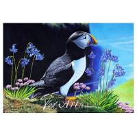Puffin in Bluebells