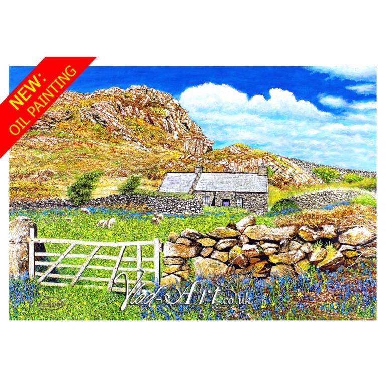 The old shepherd hut at Garn Fawr