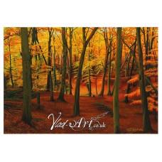 Autumnal beech woods