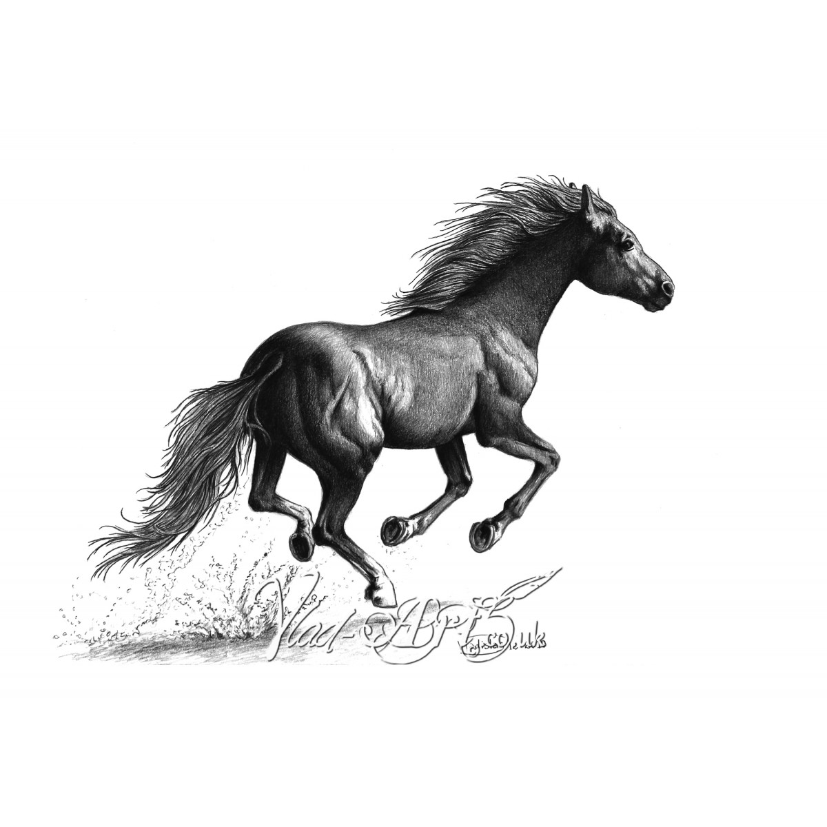 Running wild mustang pencil drawing by Vlad-Art